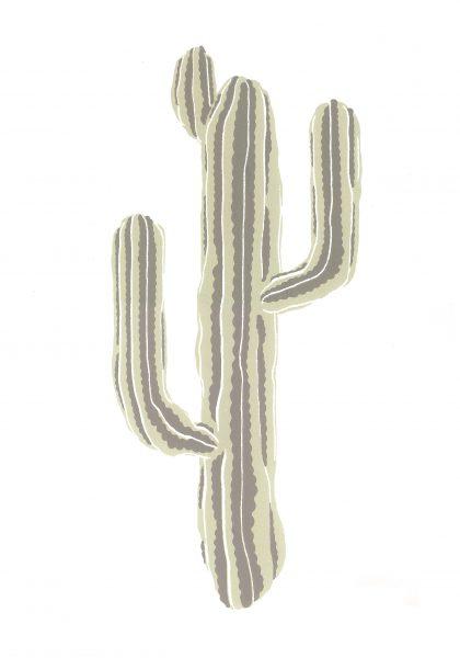 kaktus_scan